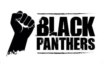 thumb-agencia-vision-design-logo-black-panthers